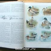 Настольная книга охотника спортсмена. Том I.