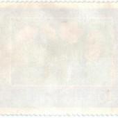 Вальдштейния гравилатолистная. Waldsteinia Geoides. Magyar Posta. 40f.
