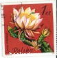 Марка гашеная. Цветущий кактус. Cereus tonduzii. Polska. 1zl. 1981 г.